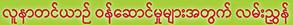 fryer_burmese